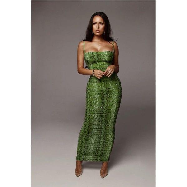 Sexy Leopard Print Snake Skin Dress Women Backless Elegant Bodycon Slim Pencil Dress Plus Size Maxi 1